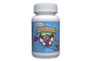 Enzymatic Therapy Sea Buddies Immune Defense 60 Tabs