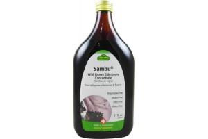 Flora (Udo's Choice) Dr. Dunner Sambu Wild Grown Elderberry Concentrate 17 Fl Oz