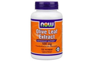 Now Foods Olive Leaf Ext 500 Mg 120 Vegetable Capsules